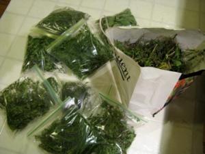Ziploc herbs