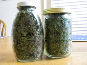 Dried Oregano and Rosemary