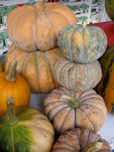 Autumnal squashes