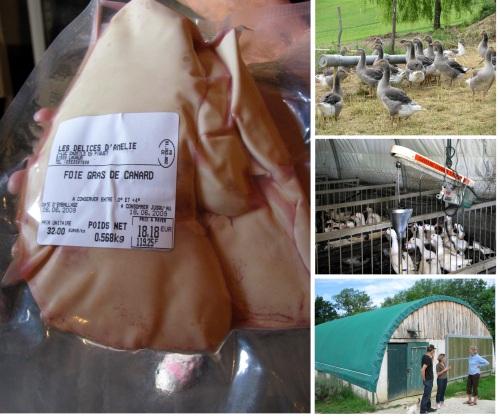 foie_gras_farm_montage